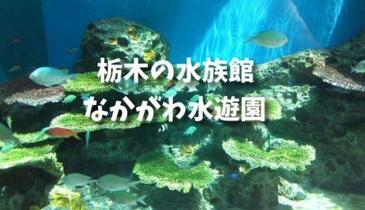 栃木の水族館・なかがわ水遊園 子供達ザリガニ釣りにハマる
